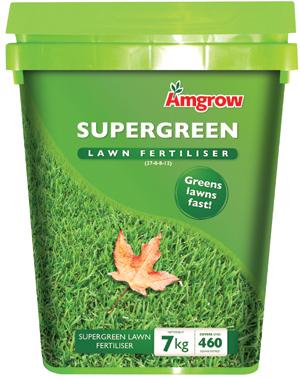 rgb Supergreen Mockup low res