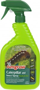 Caterpillar insect 750ml