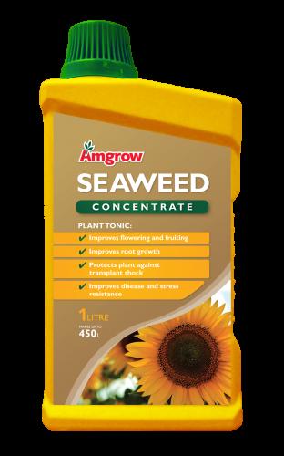 60222_Seaweed Conc_1L